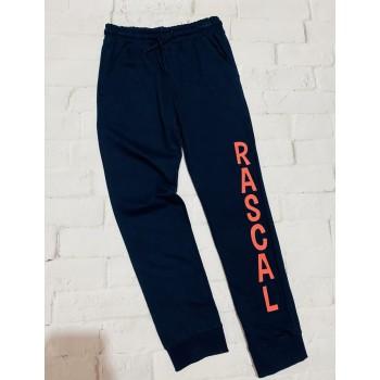 Демисезонные спортивные штаны на манжетах , рост 128(8-9 лет). Польская фирма Pepco